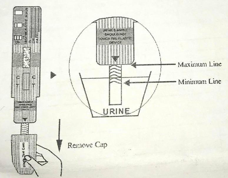 Bilden visar hur pass stor andel av urinprovet som ska täcka drogtestets nedre del.