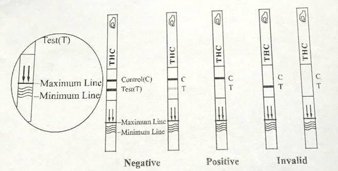 Beskrivning av de olika resultaten som uppkommer vid utfört drogtest och hur positivt kontra negativt ska uttydas.